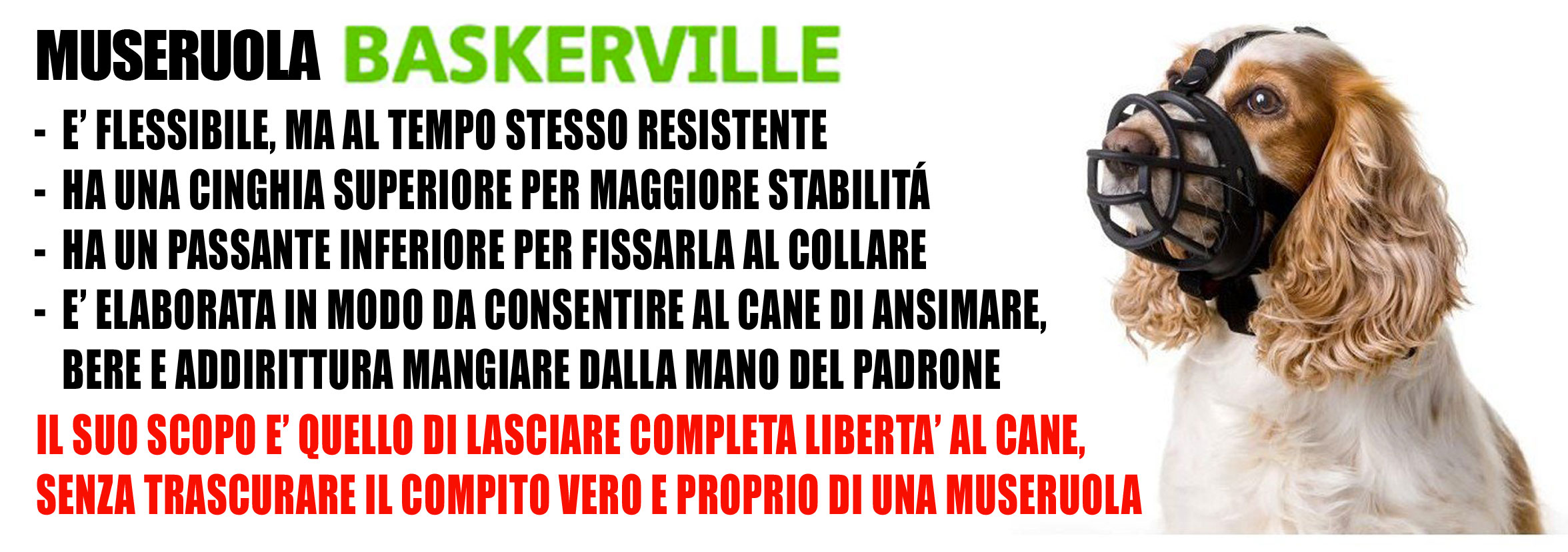 baskerville_sito